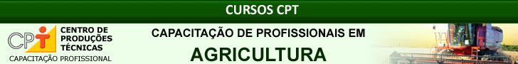 Produção de Fumo no Brasil
